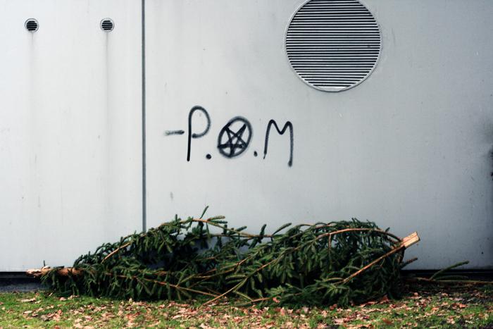 juletræer Kastrup Strandpark Amager amarOrama