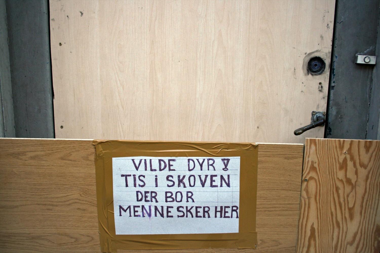 vilde-dyr-brigadevej-amager-amarorama
