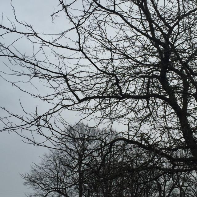 en mørkere himmel