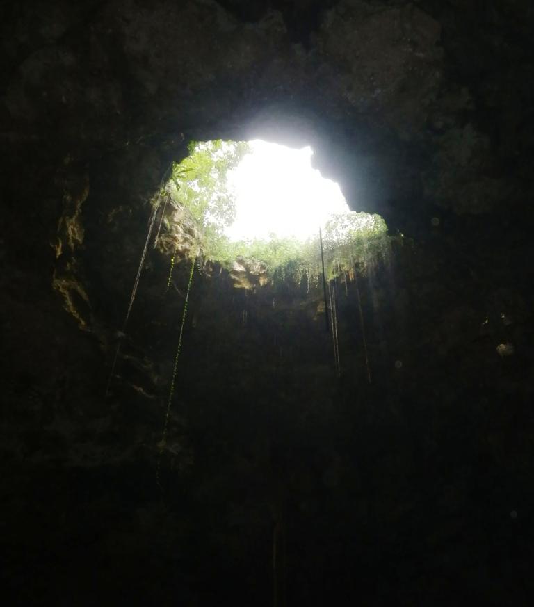 Billedet er mørkt, men vi befandt os også under jorden i et ferskvands'hul'. Dette var, hvad vi så, når vi flød rundt i det kølige vand.