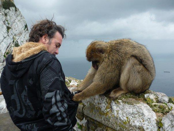 Gibraltar er et af de steder, du kan besøge, hvis du tager på udflugter fra Malaga