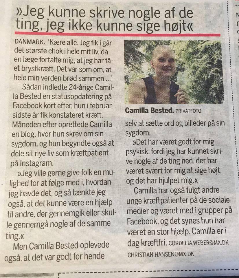 Artiklen i avisen
