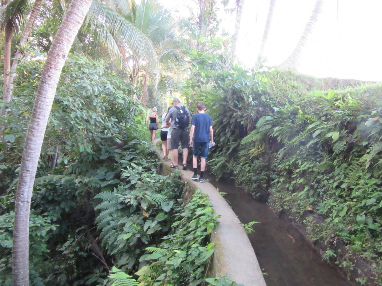 Jungletur på bali, Ubud