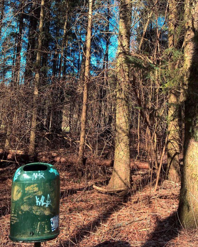 sammi-skoven