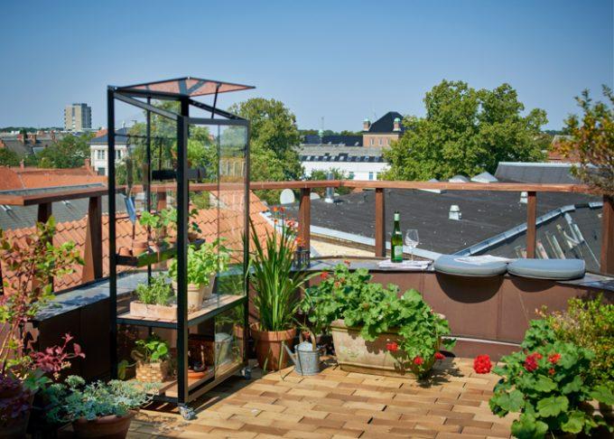 juliana city greenhouse