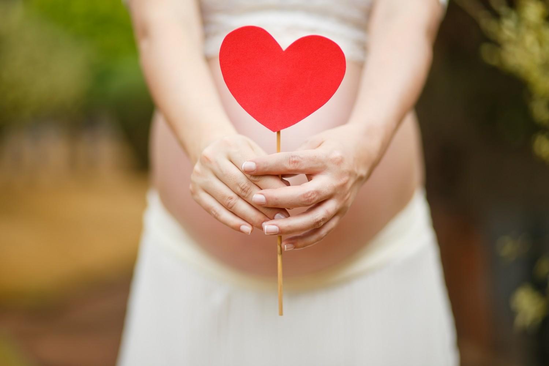 pregnant-woman-1910302_1920-1